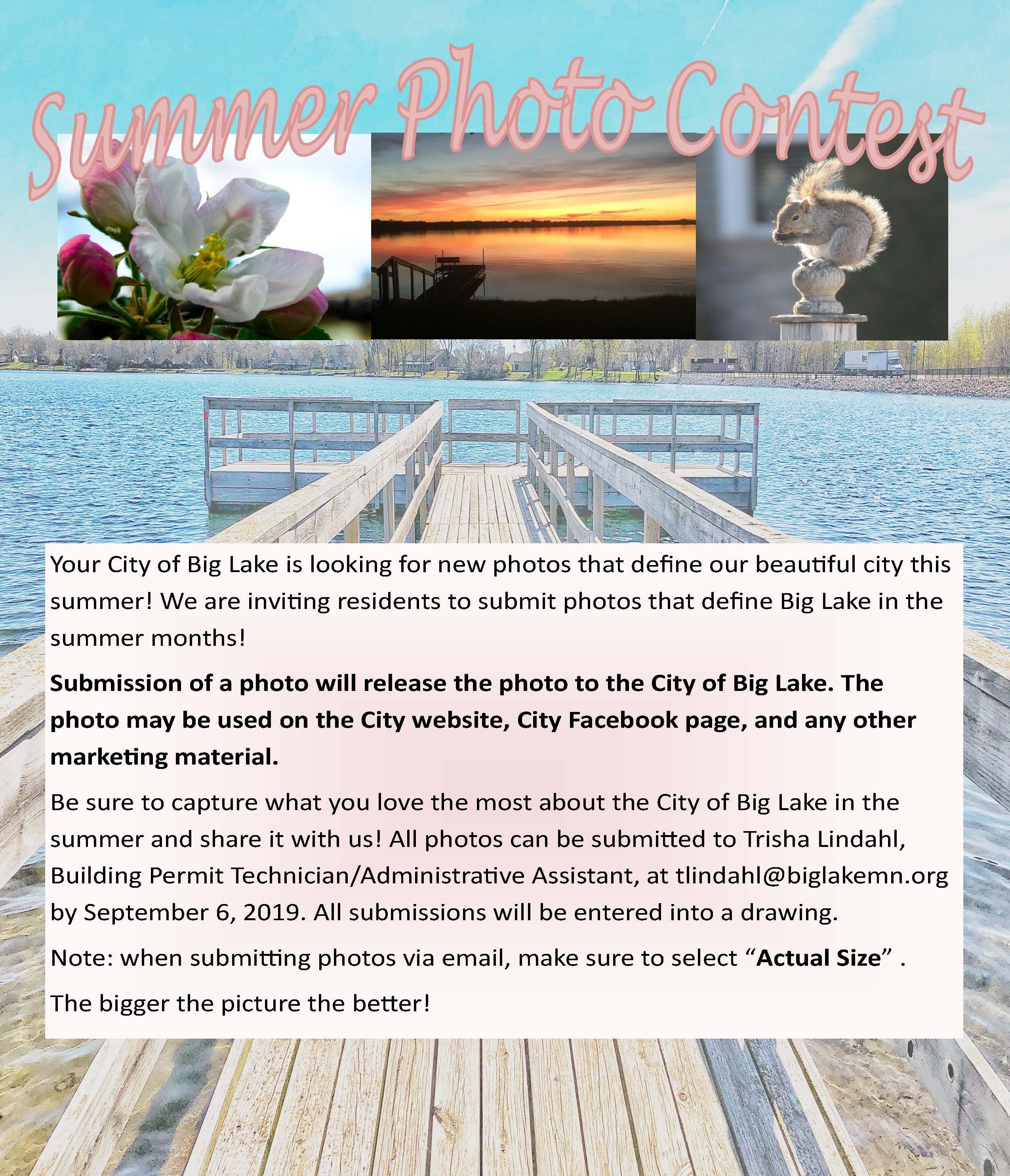 Summer Photo Contest Flyer